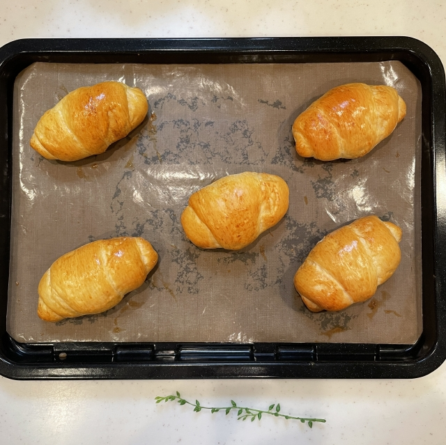 すべてのパンレシピの基本になる定番のバターロール15