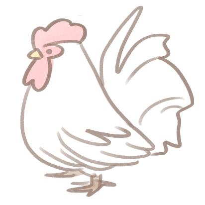 ガーリック香るチーズ入り濃厚クリームソースで楽しむ越の鶏のシュクメルリ5