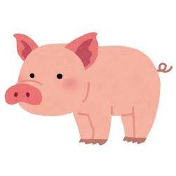 ハンバーグと遜色ない肉にくしさを誇る極選豚の黒酢あんかけ肉団子5